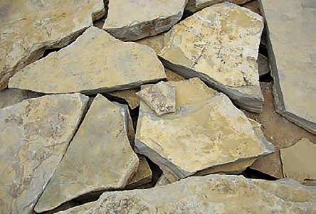 amarillo-fosil