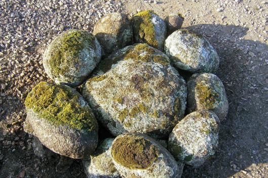 granito-musgo