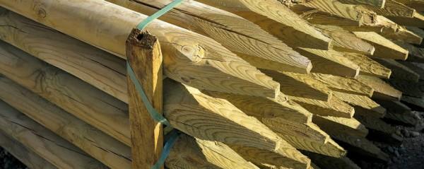 tutor-madera